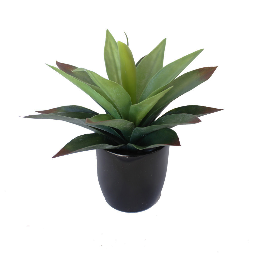 AGAVE PLANT GREEN RED POTTED 25CM COMPLETE WITH FIBREGLASS POT