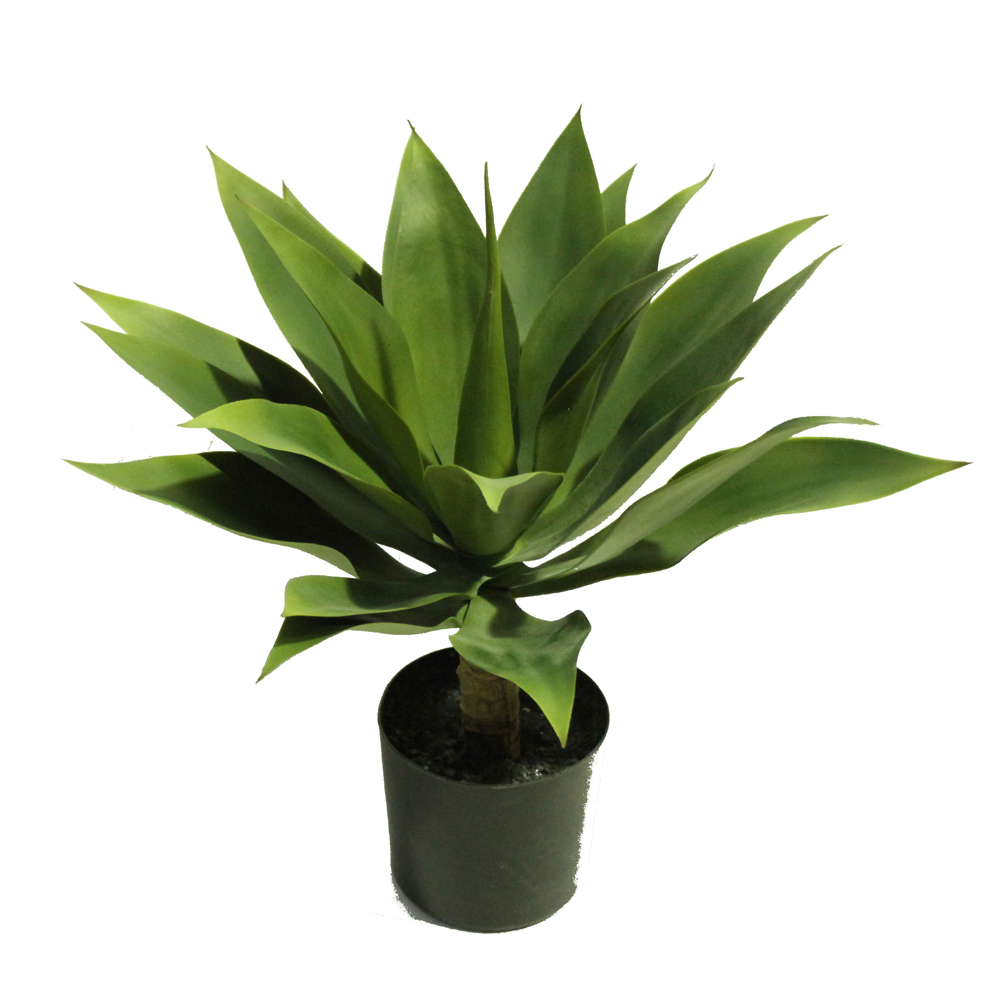 ARTIFICIAL AGAVE
