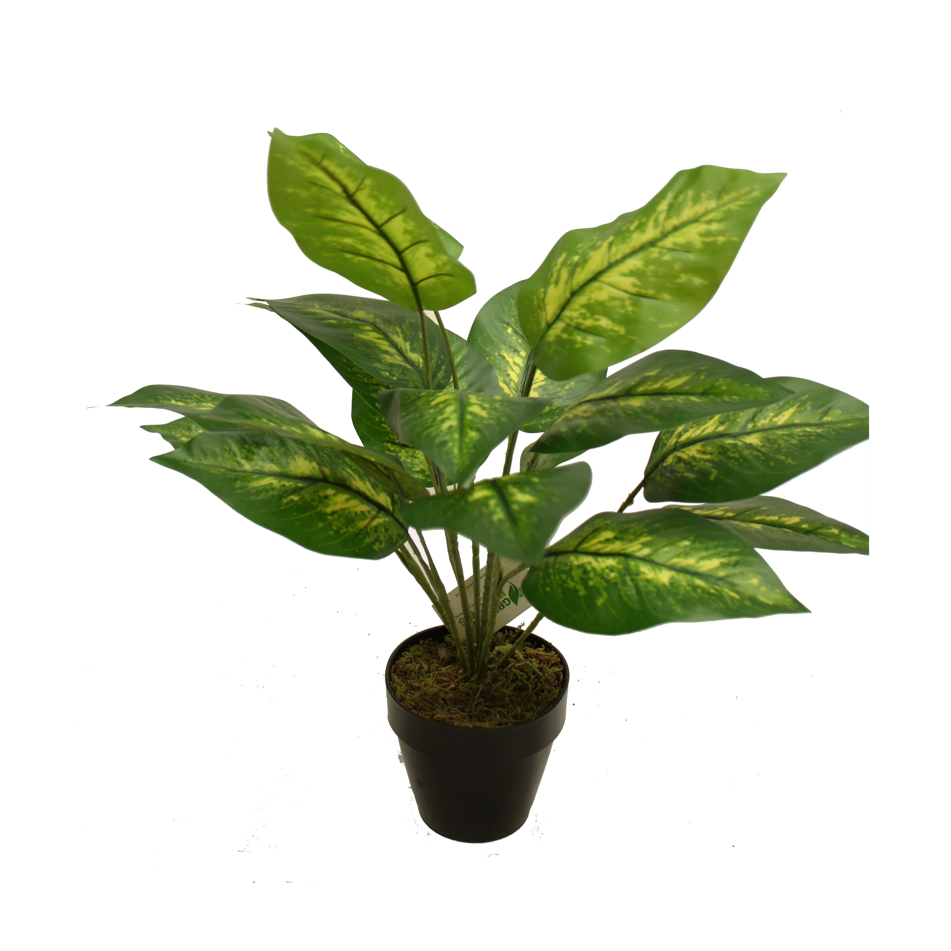 ARTIFICIAL DIEFFENBACHIA PLANT 46CM IN BASIC POT
