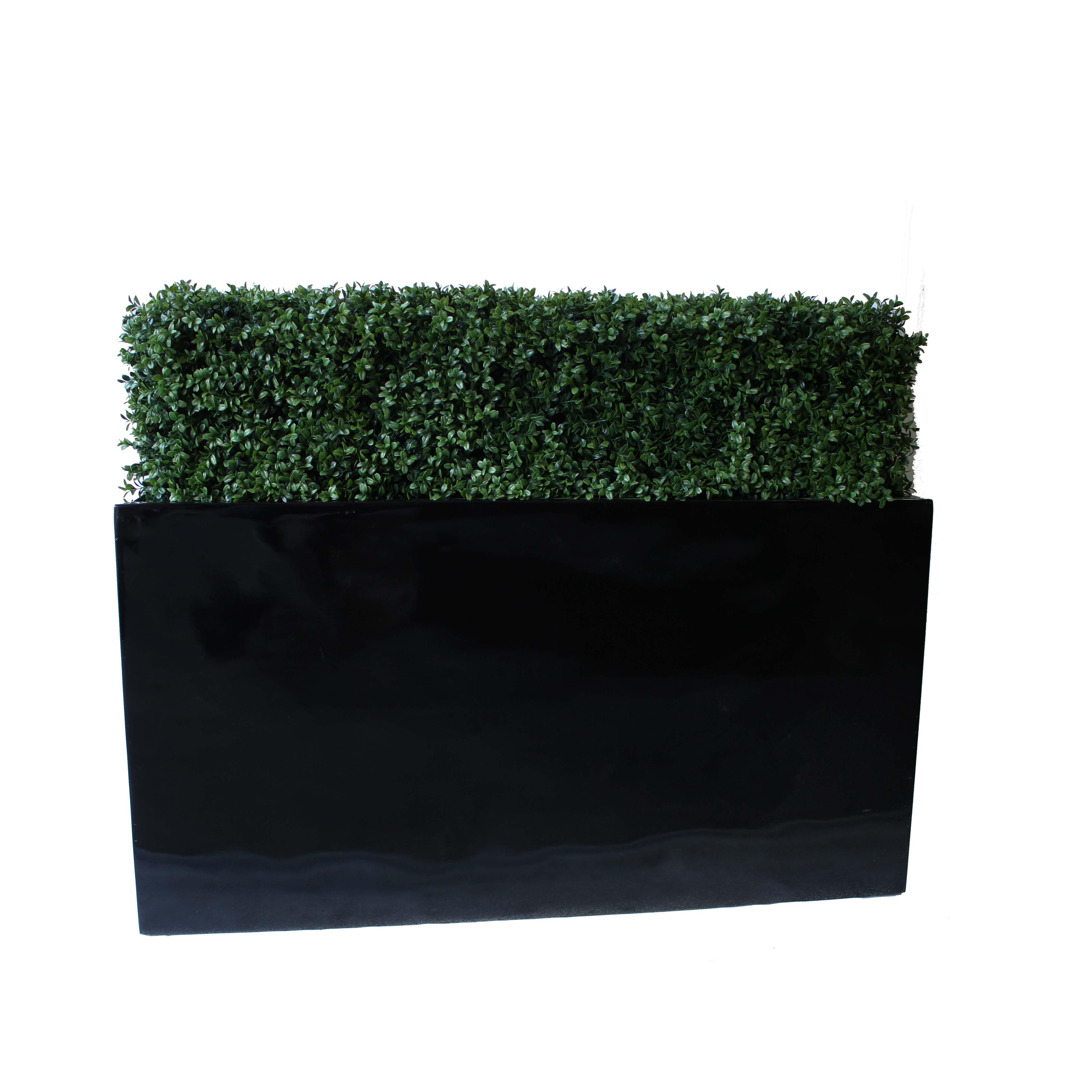 Hedges With Fibreglass Trough.