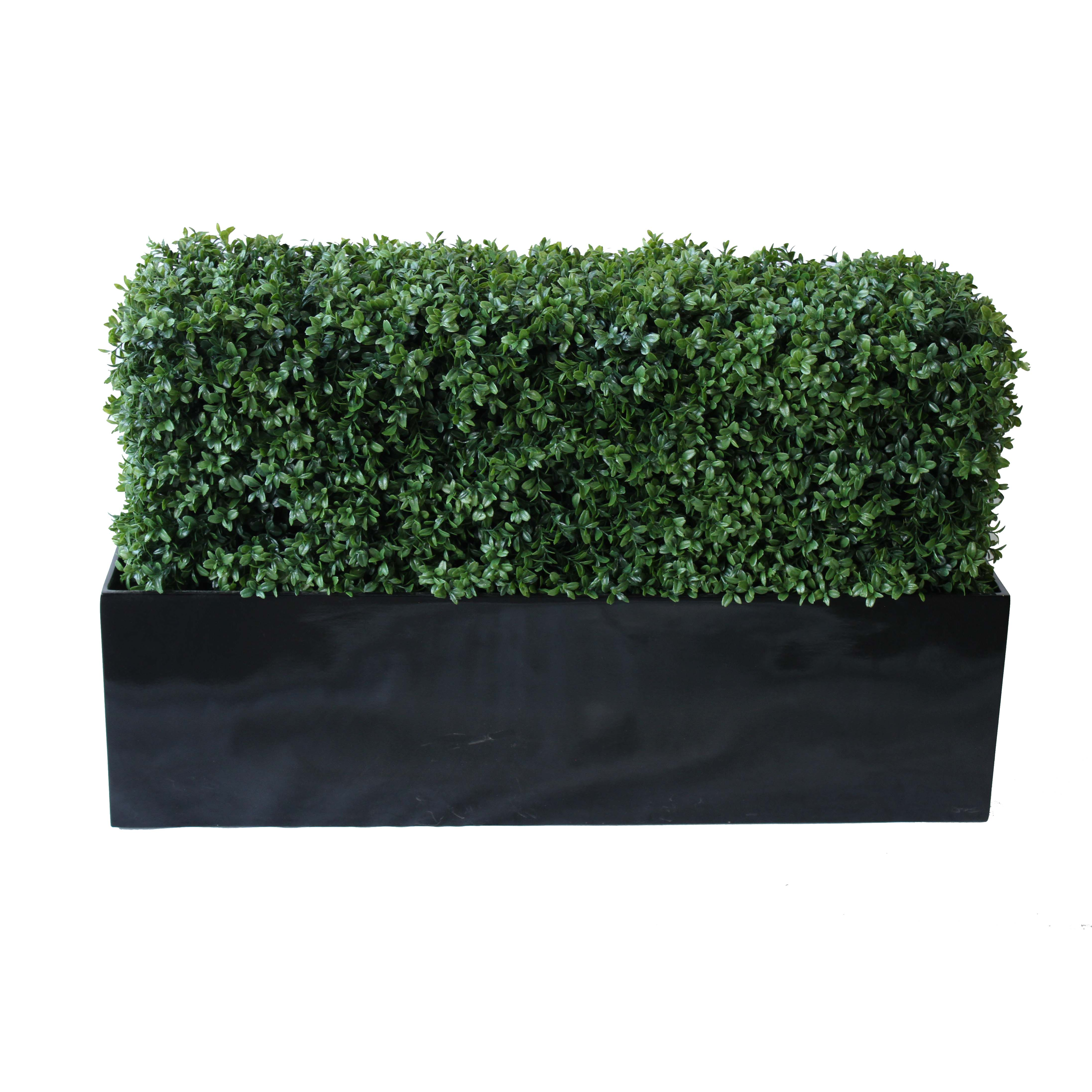 PREMIUM DELUXE BOXWOOD HEDGE 120 WIDE X 95CM TALL WITH FIBREGLASS TROUGH