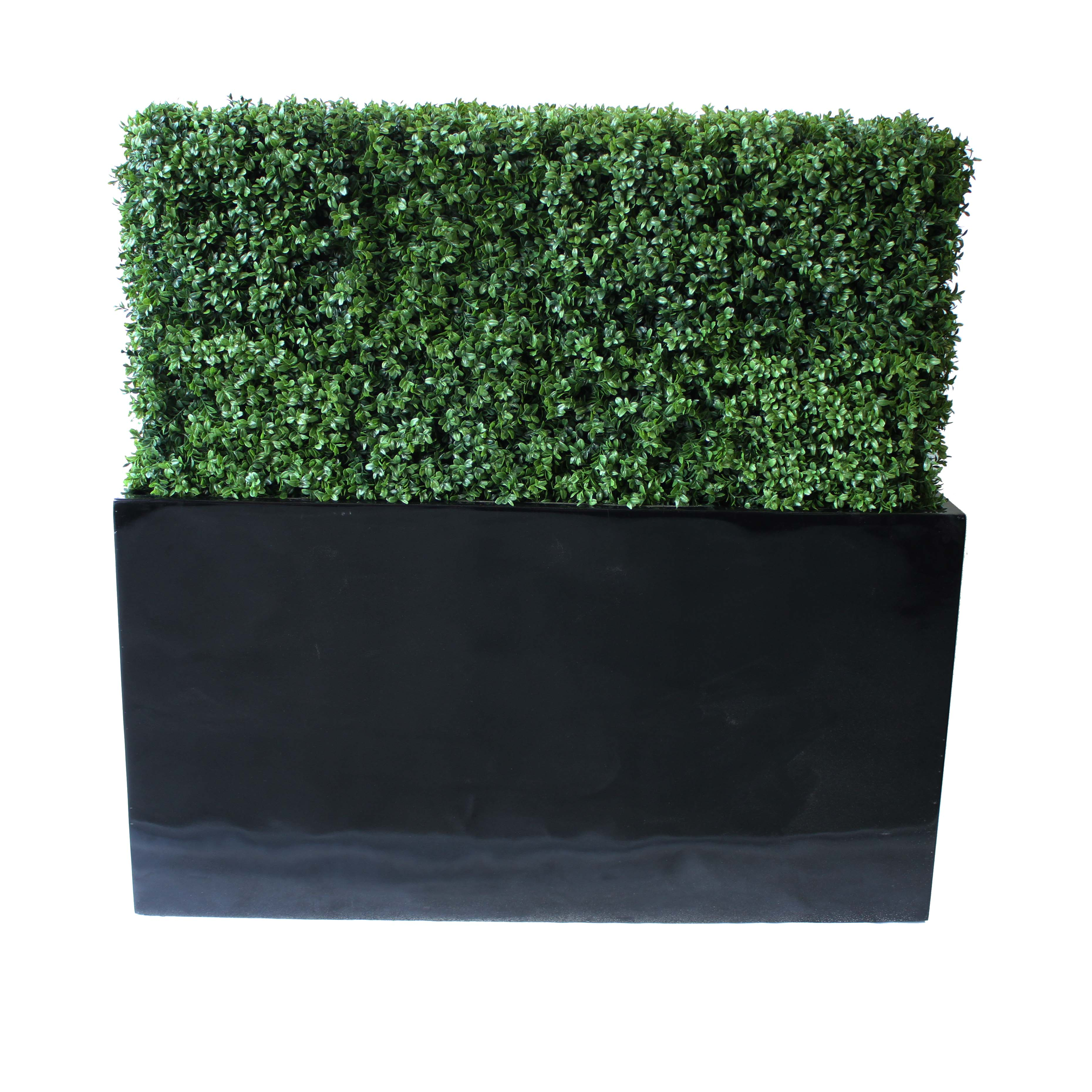 PREMIUM DELUXE BOXWOOD HEDGE 120 WIDE X 115CM TALL WITH FIBREGLASS TROUGH