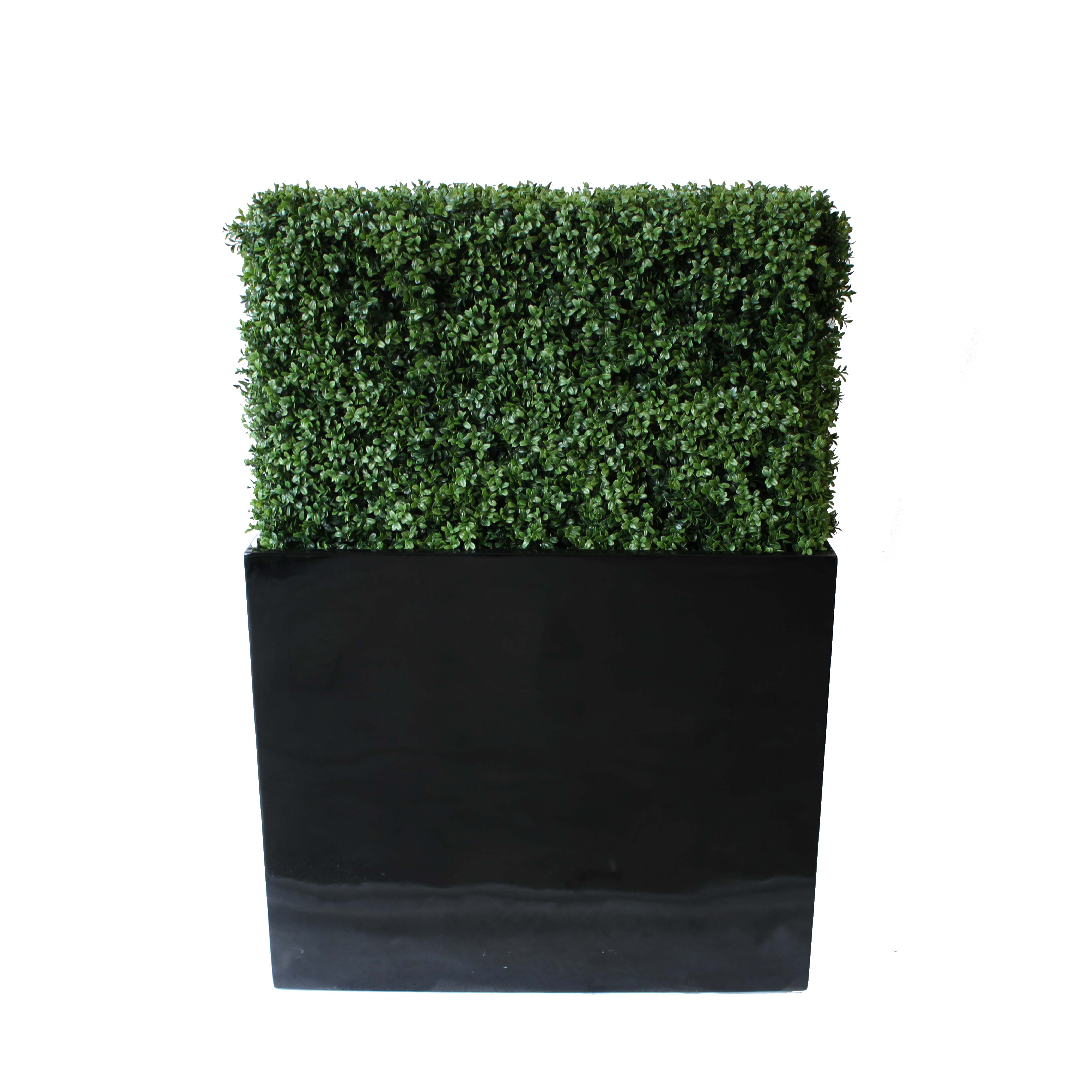 PREMIUM DELUXE BOXWOOD HEDGE 90 WIDE X 115CM TALL WITH FIBREGLASS TROUGH